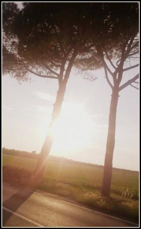 Due e il Sole.